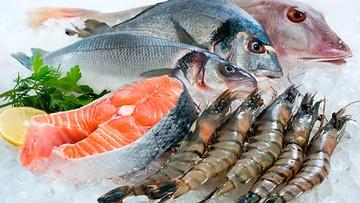 Дары моря. Главные морепродукты